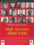 Книга SQL Server 2000 XML. Берк Пол Дж. 2003