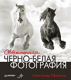 Книга Современная черно-белая фотография. Ефремов